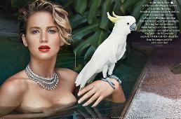 JENNIFER LAWRENCE HOLLYWOOD'UN YENİ YILDIZI